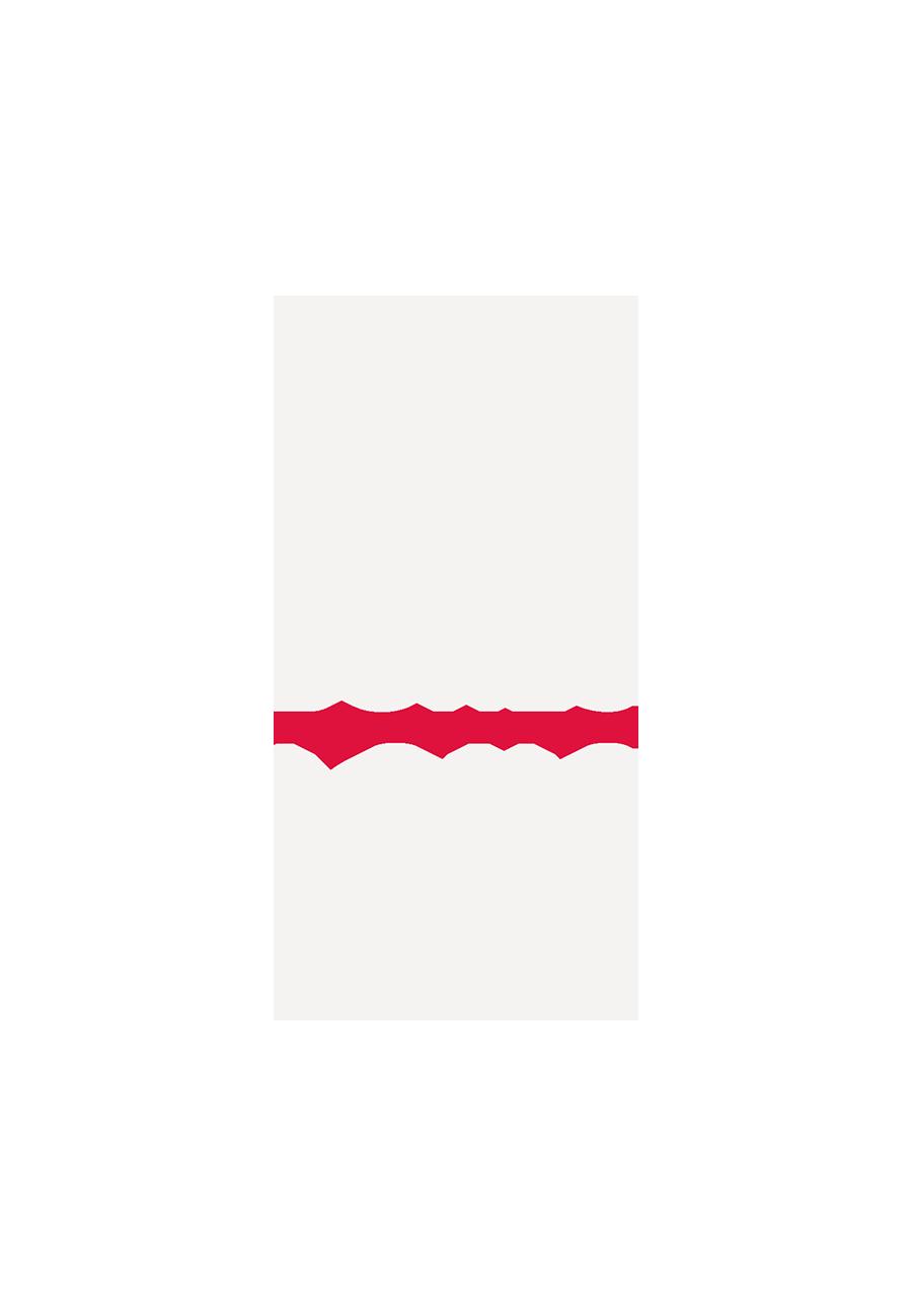 bigbones2